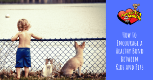 How to Encourage a Healthy Bond Between Kids and Pets